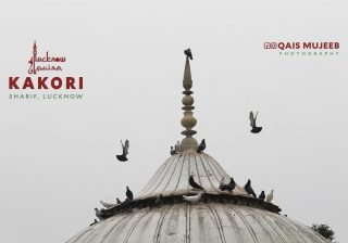 Picture of pigeons flying around the dome of a Tomb at Kakori near Lucknow, India. Pic courtesy: lucknowpulse, Qais Mujeeb Photography