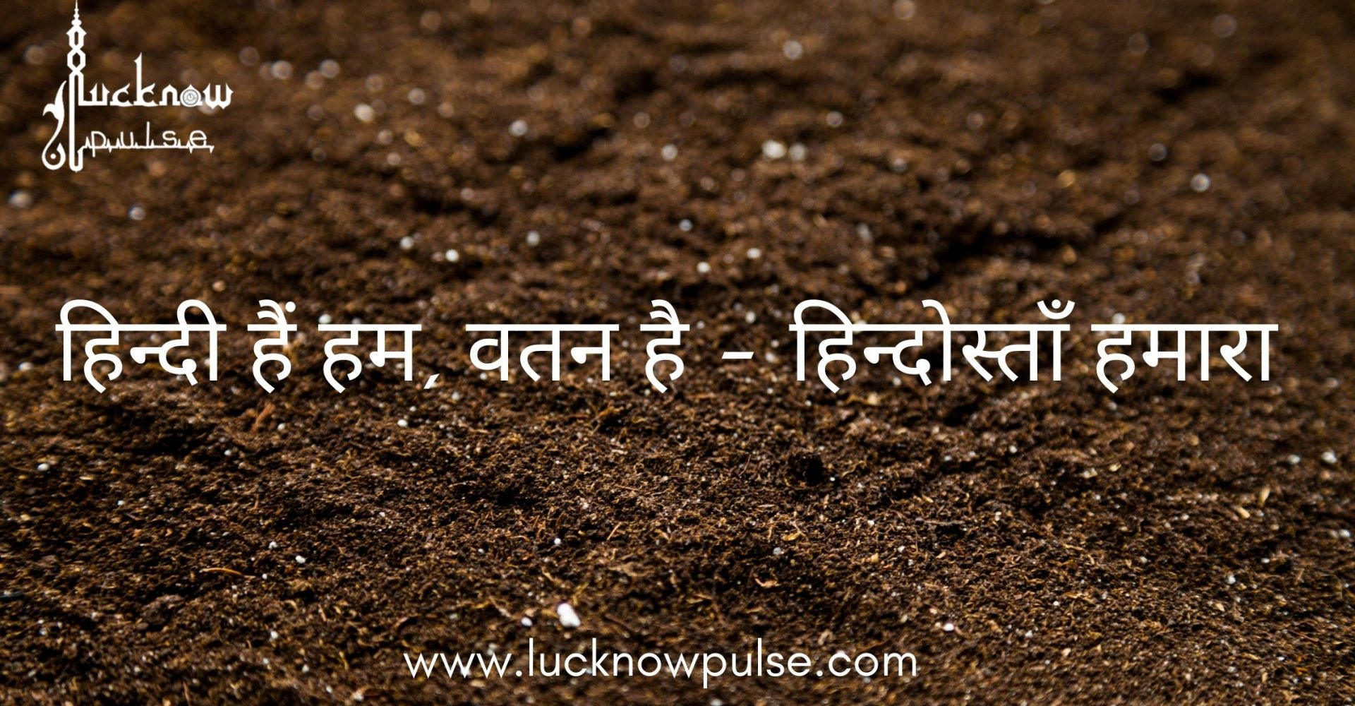 A blog post on Hindi Diwas by lucknow pulse - All about Lucknow